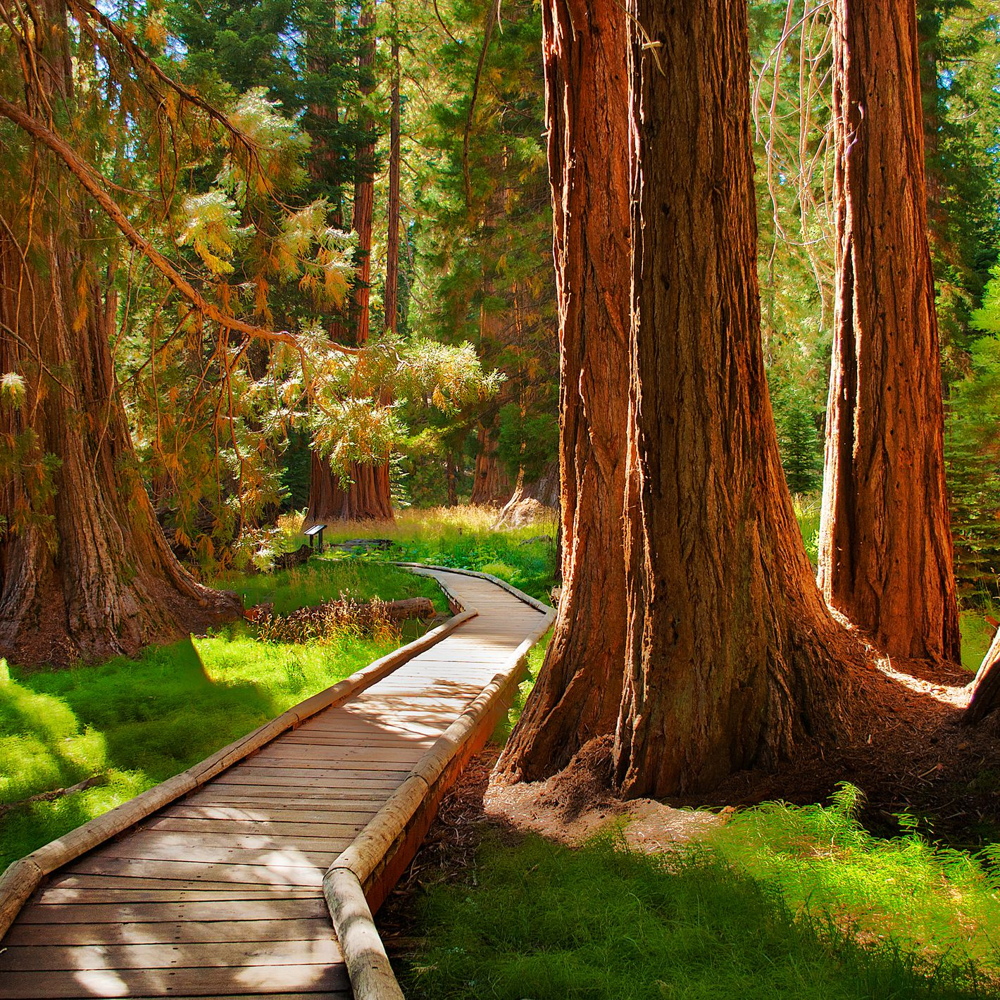 California's Top Summer Getaway Locations