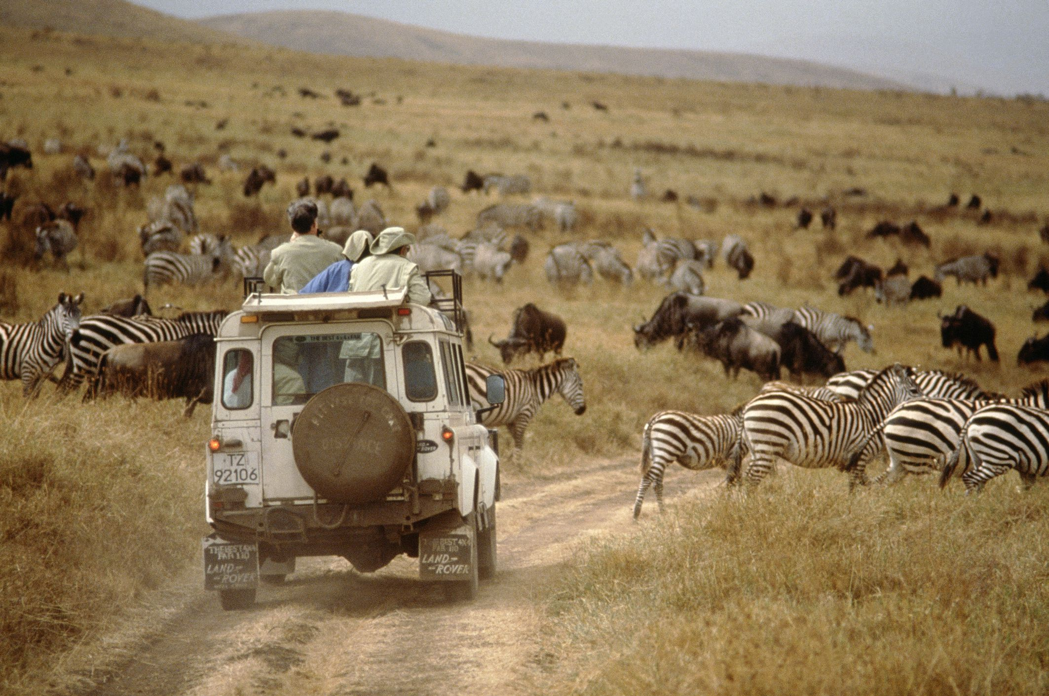 Quotes On Auto Insurance >> Inspirational Quotes About Africa Travel