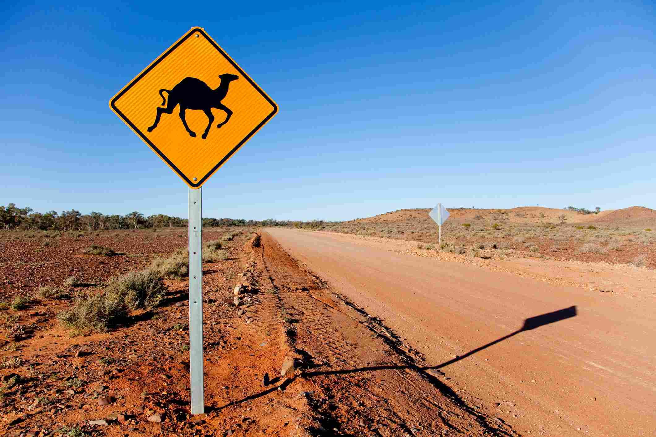 Señal de advertencia de camello en el interior de Australia