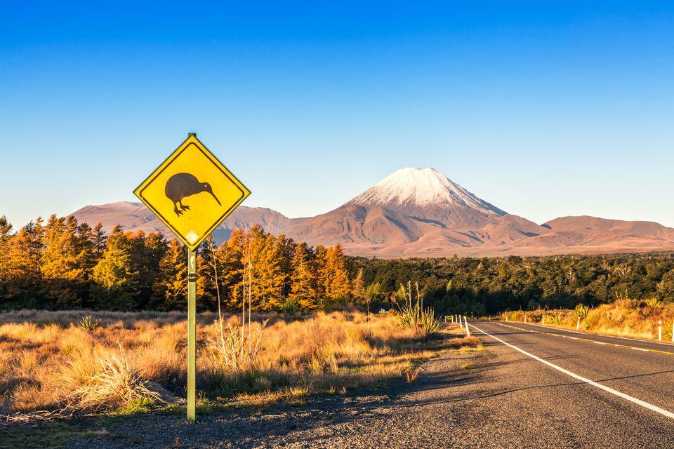 Señal de Kiwi en el camino a Tongariro, Nueva Zelanda