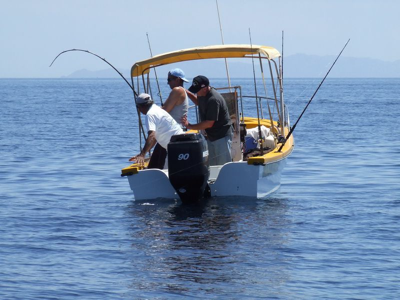 Covered Panga Fishing for Yellowtail in the Sea of Cortez