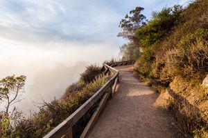 Pfeiffer Falls Trail