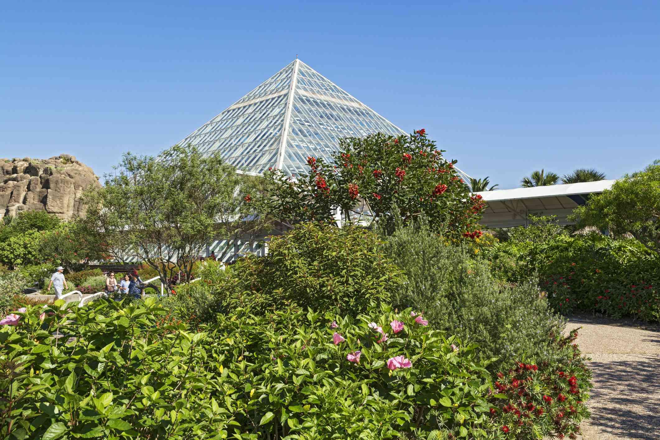 Texas, Galveston, Moody Gardens, Rainforest Pyramid