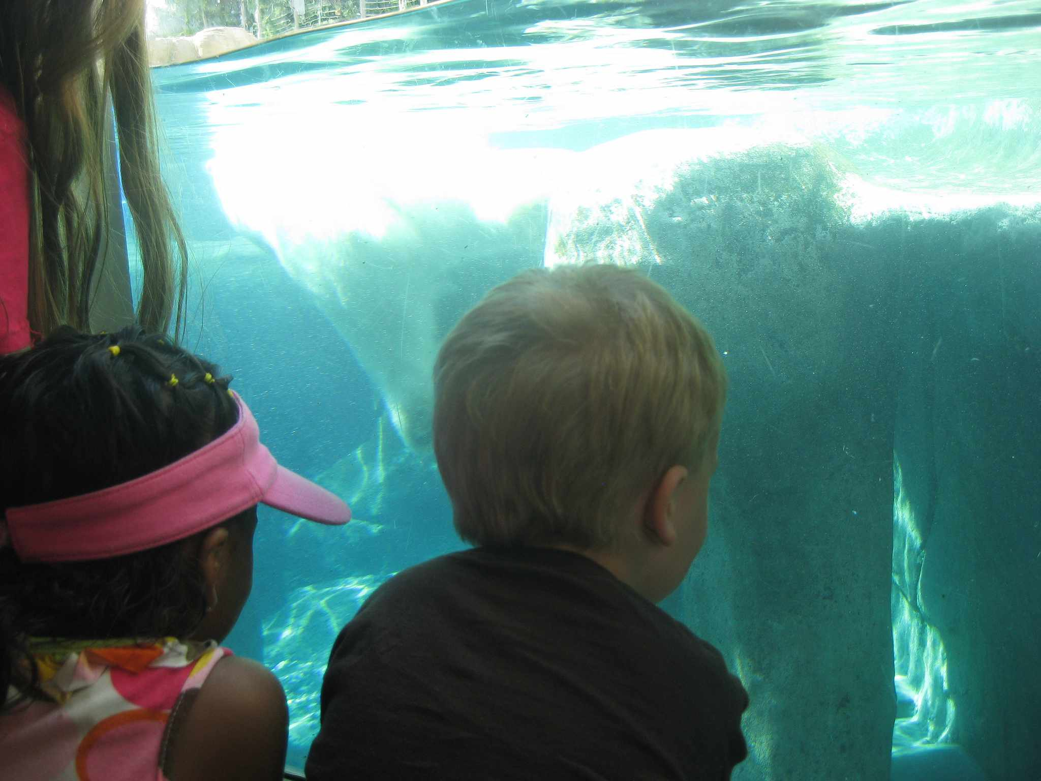 Children at Toledo Zoo