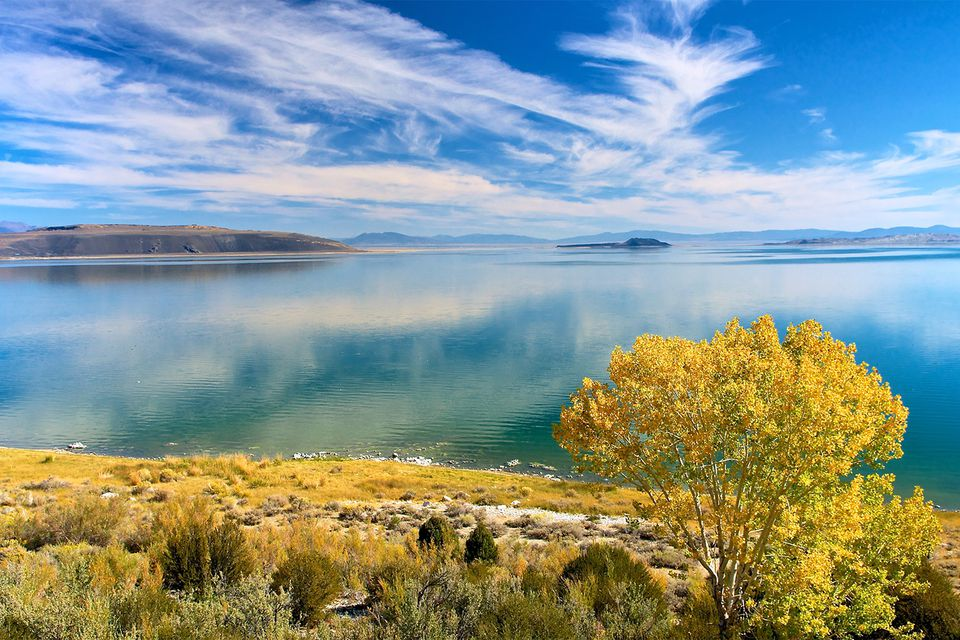 Reasons to Visit Oddly Interesting Mono Lake