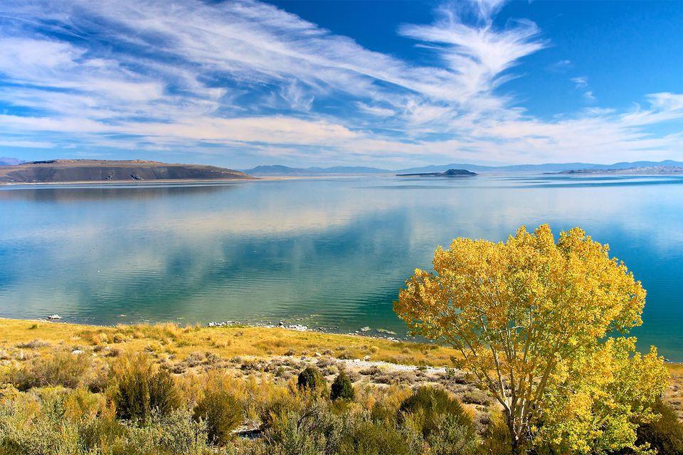 Mono Lake en el otoño