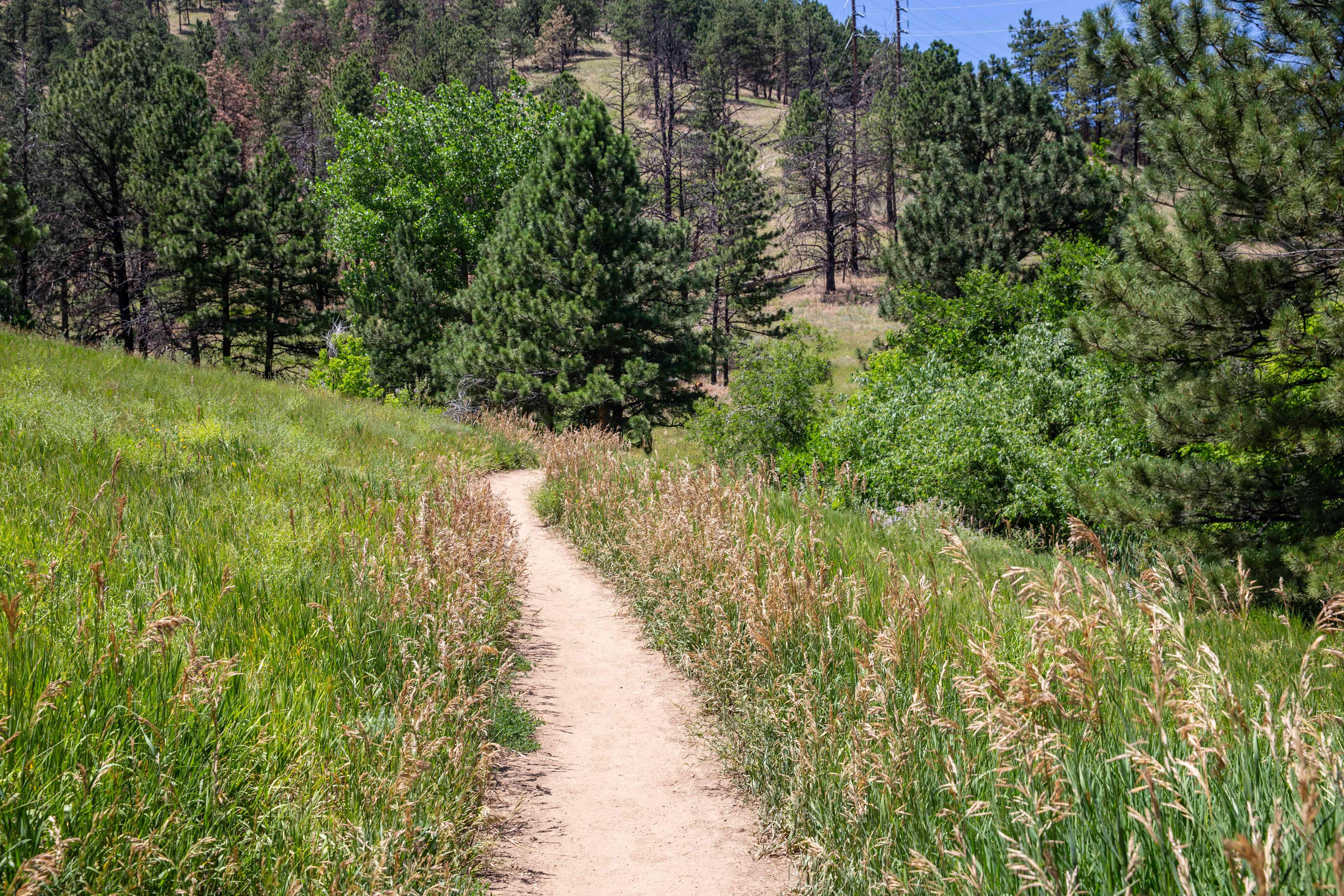 Mount Sanitas in Boulder, Colorado