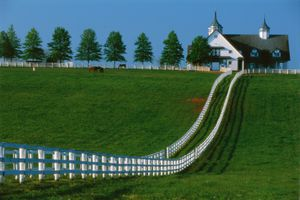 Manchester Farm in Kentucky