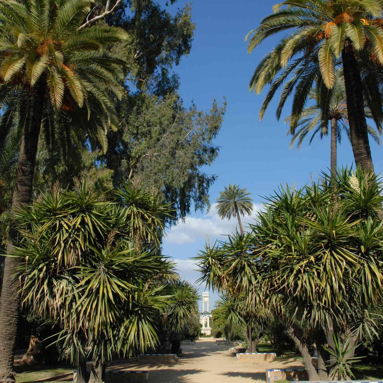 The Murillo Gardens in Seville, Spain