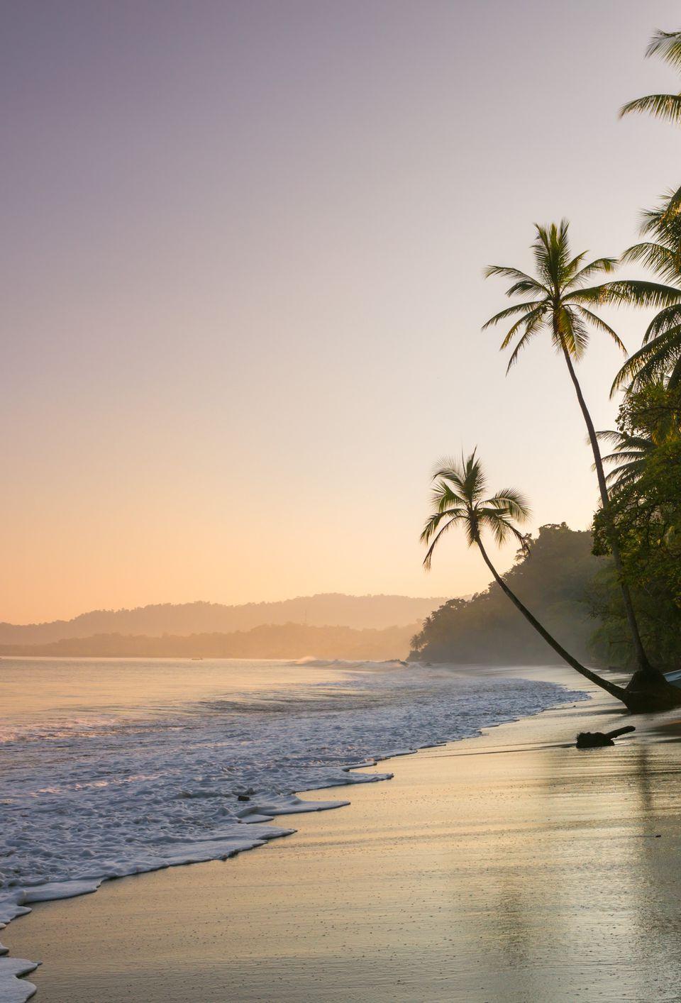 Sunset on palm fringed beach, Costa Rica