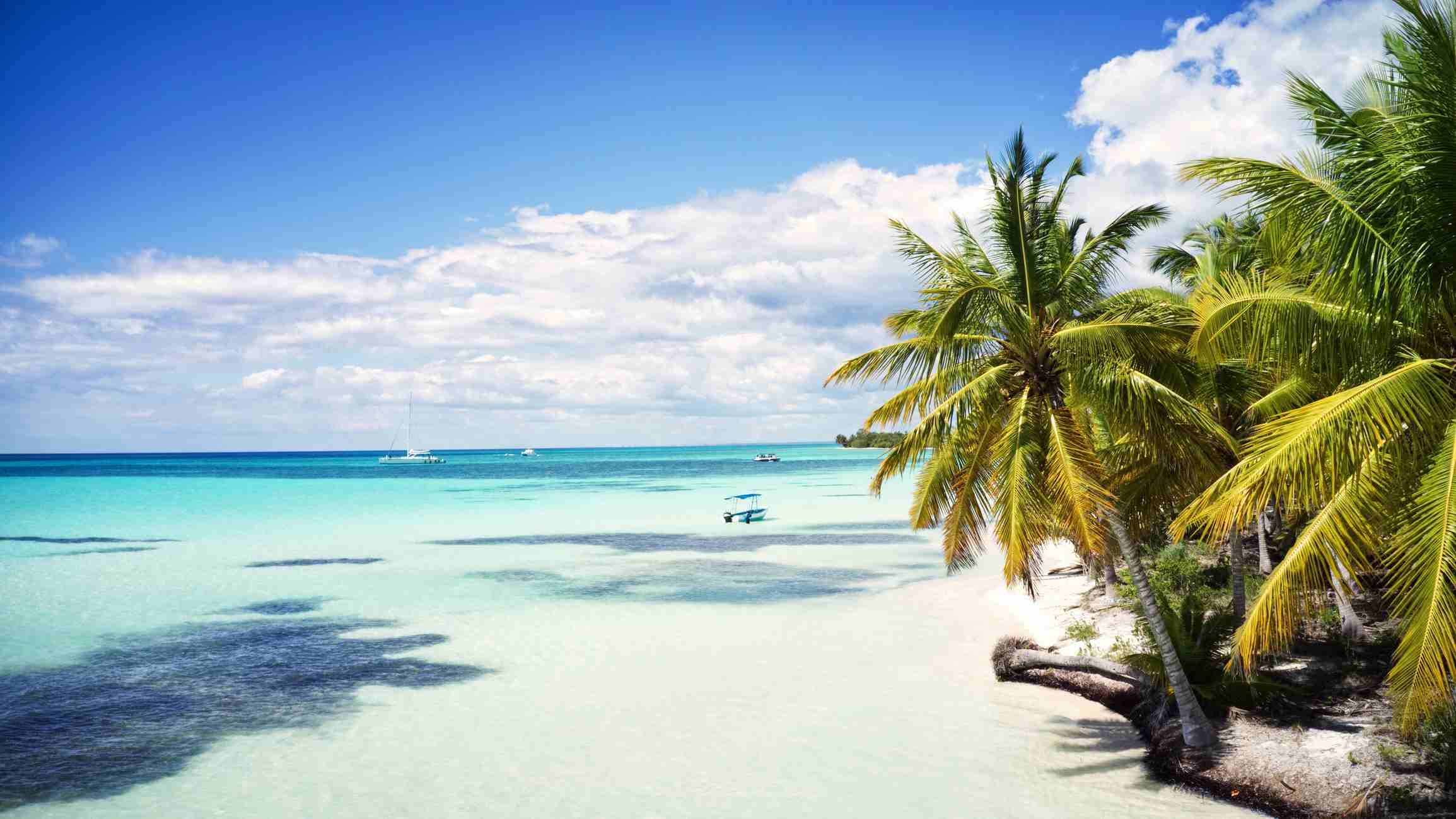 aerial view of a beautiful caribbean island, Saona, Dominican Republic