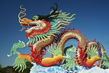 Chinese Lion Or Dragon Dance What S The Difference