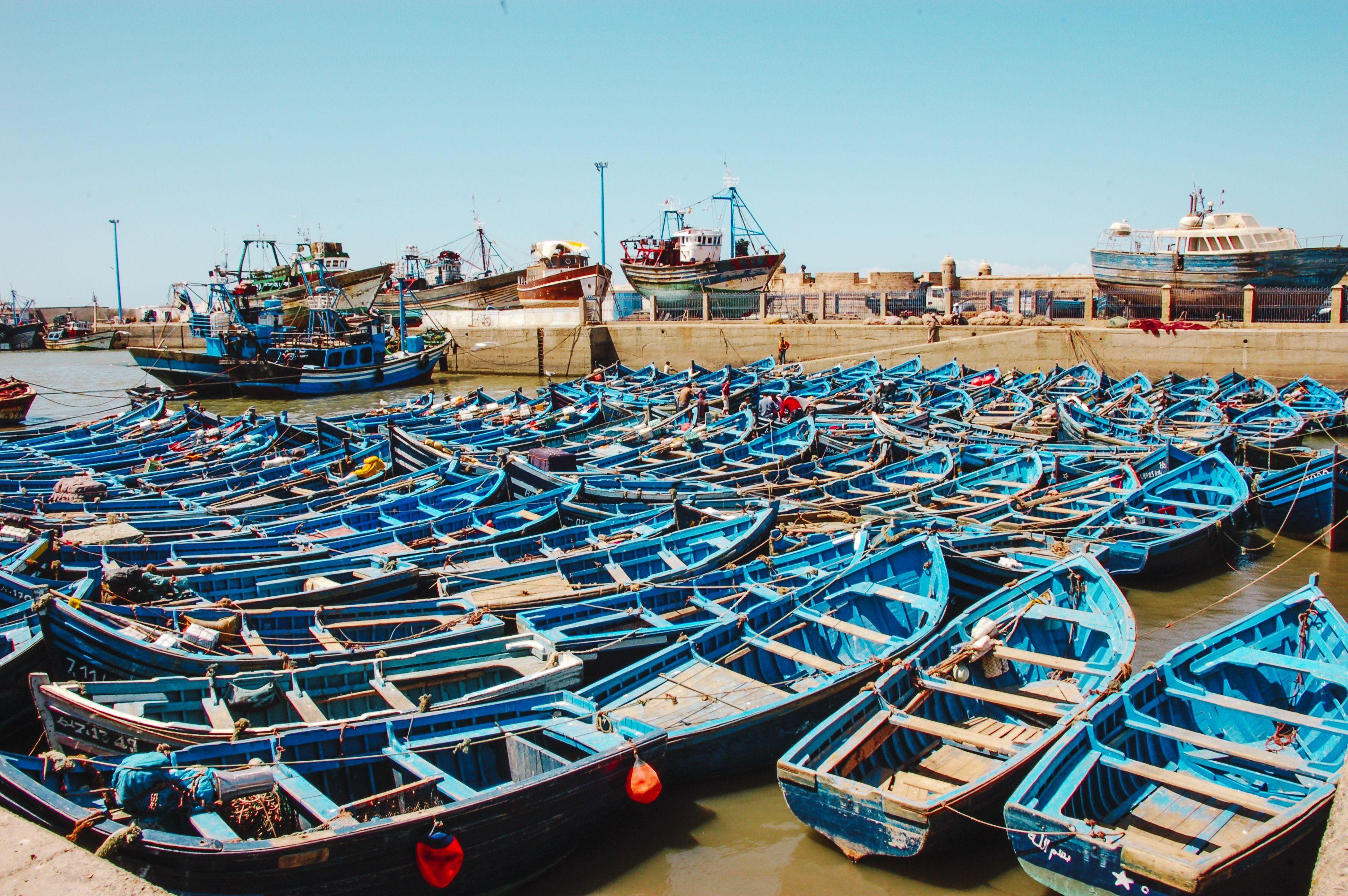 Dozens of blue boats docked in Essaouira