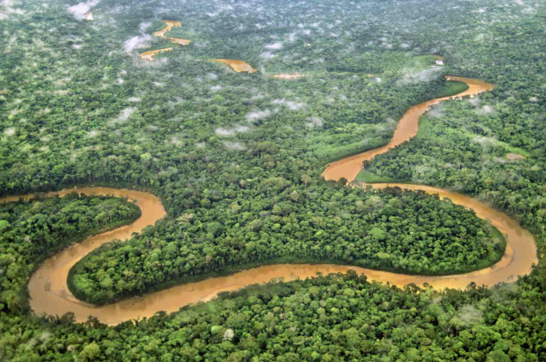 Aerial photo of Tambopata National Reserve