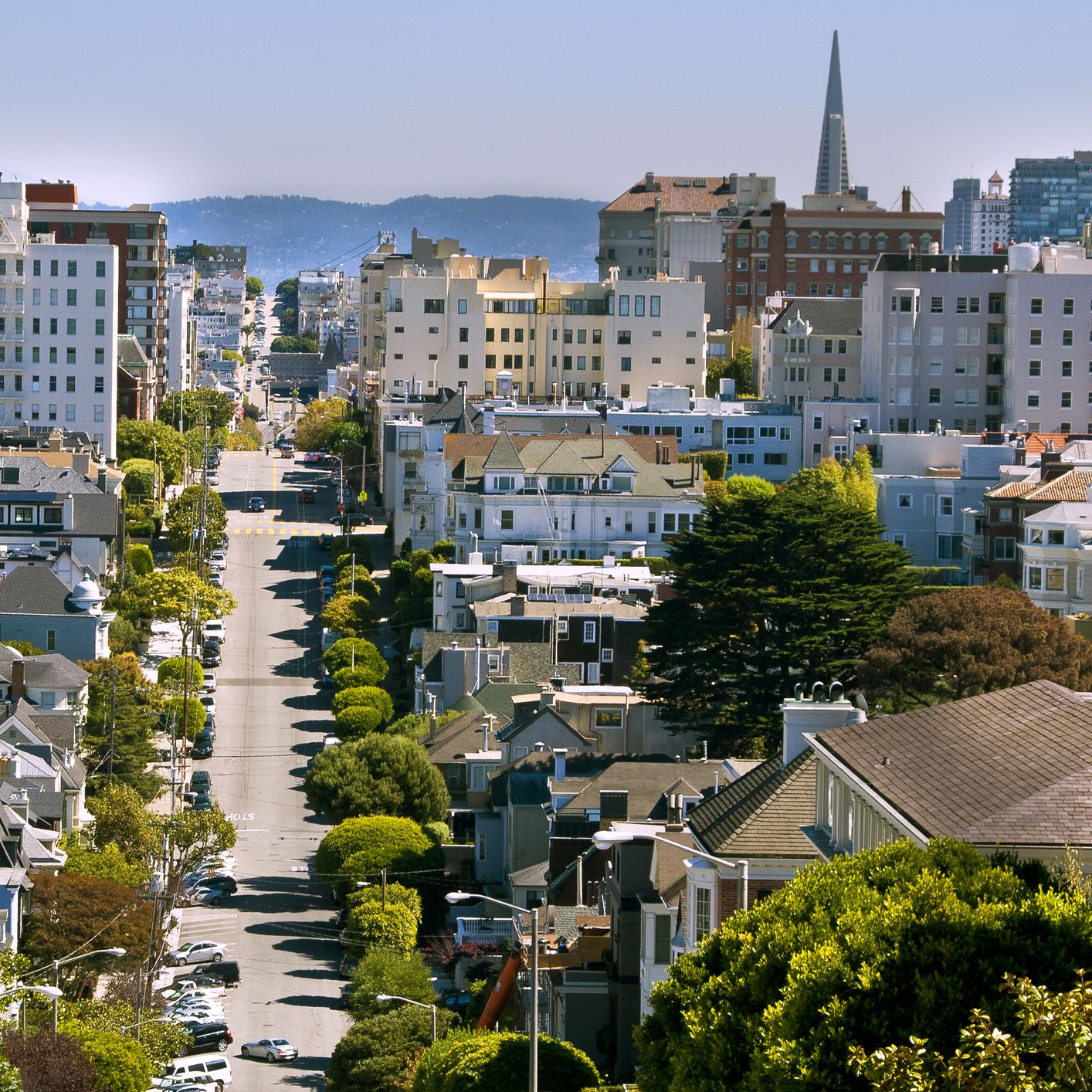 Things to Do in San Francisco's Pacific Heights Neighborhood