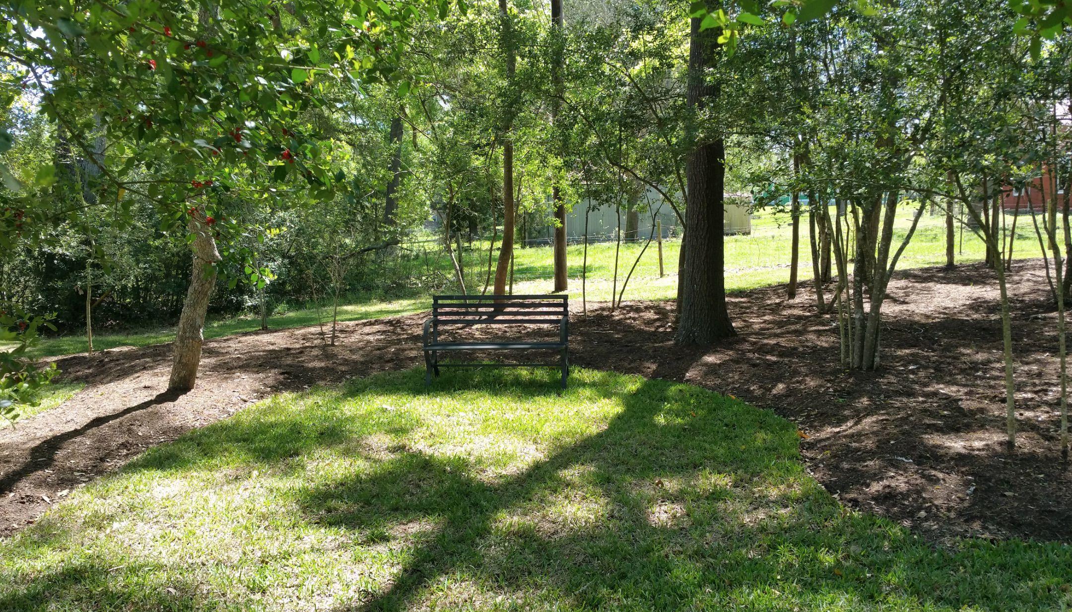 Lush greenery at Texas Star Winery