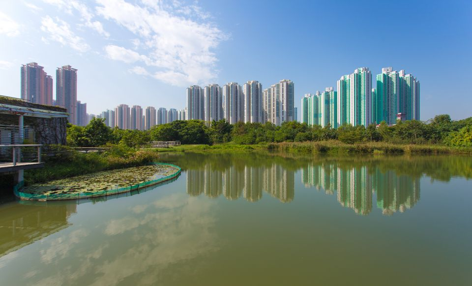 Hong Kong Wetland park and the skyscrapers