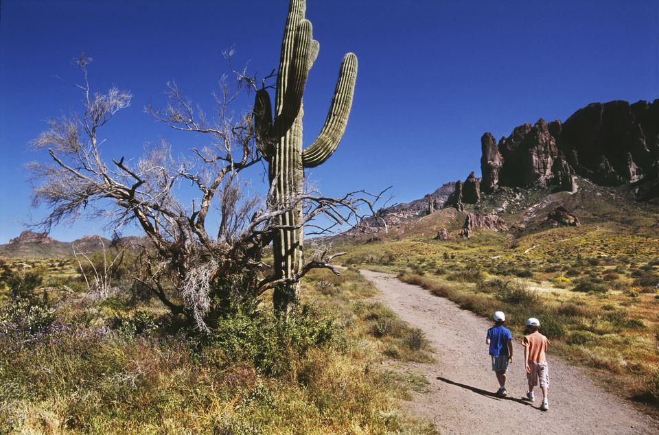 Two boys on a hiking trail, AZ, USA