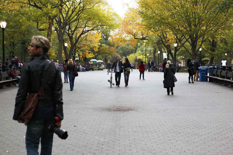 5 Lovely Walks in Manhattan