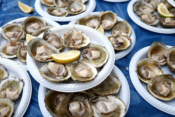 Several plates of bluff oysters with a lemon wede
