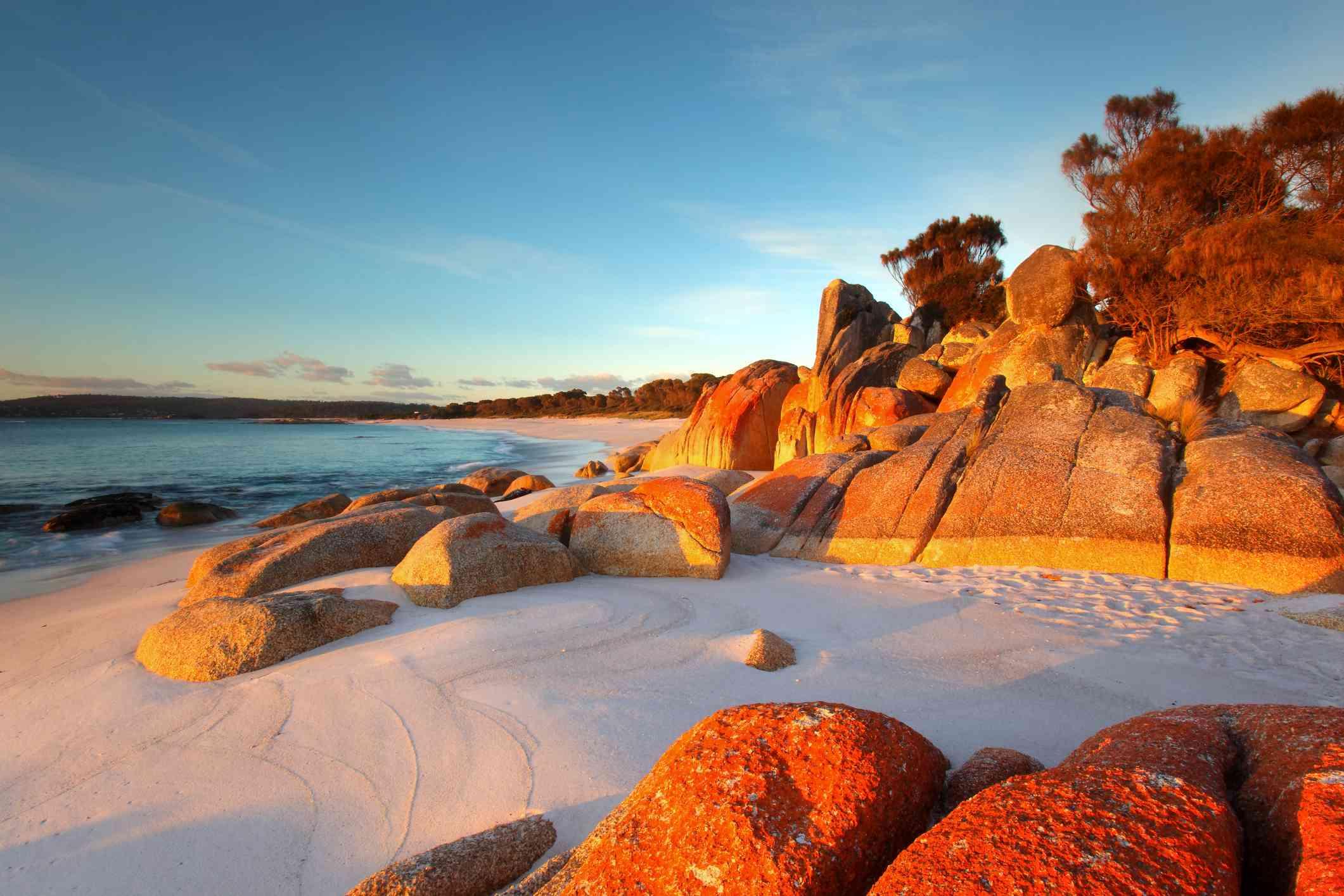 Red lichen on rocks, white sand beach