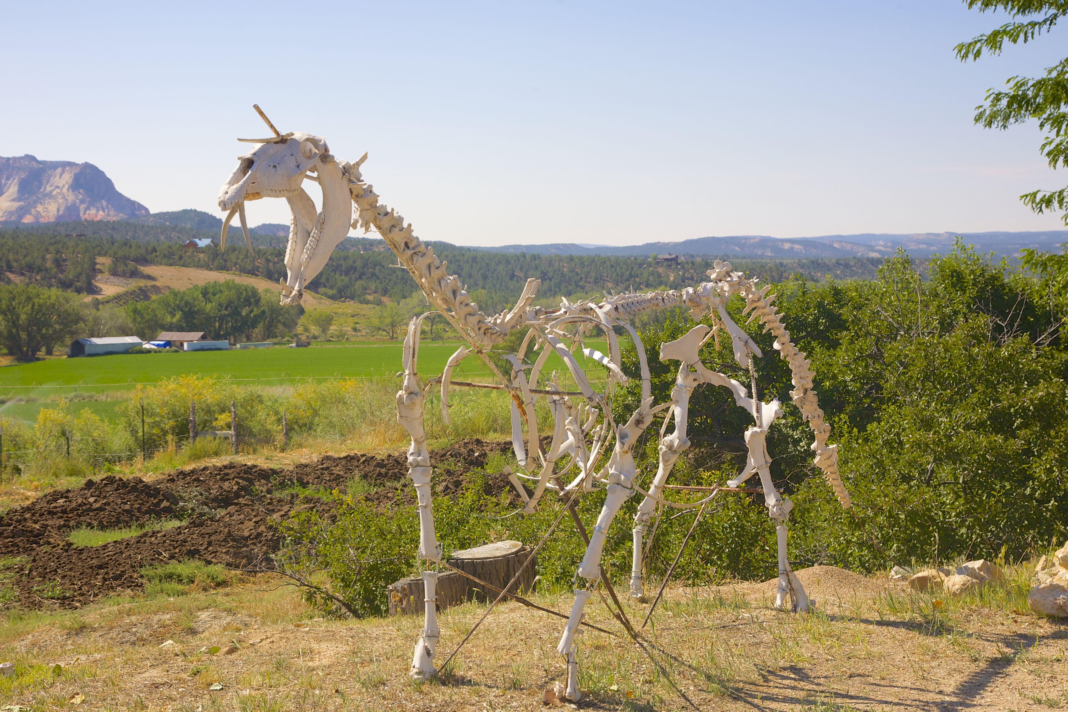 Esqueleto de dinosaurio cerca del campo en Orderville, Utah