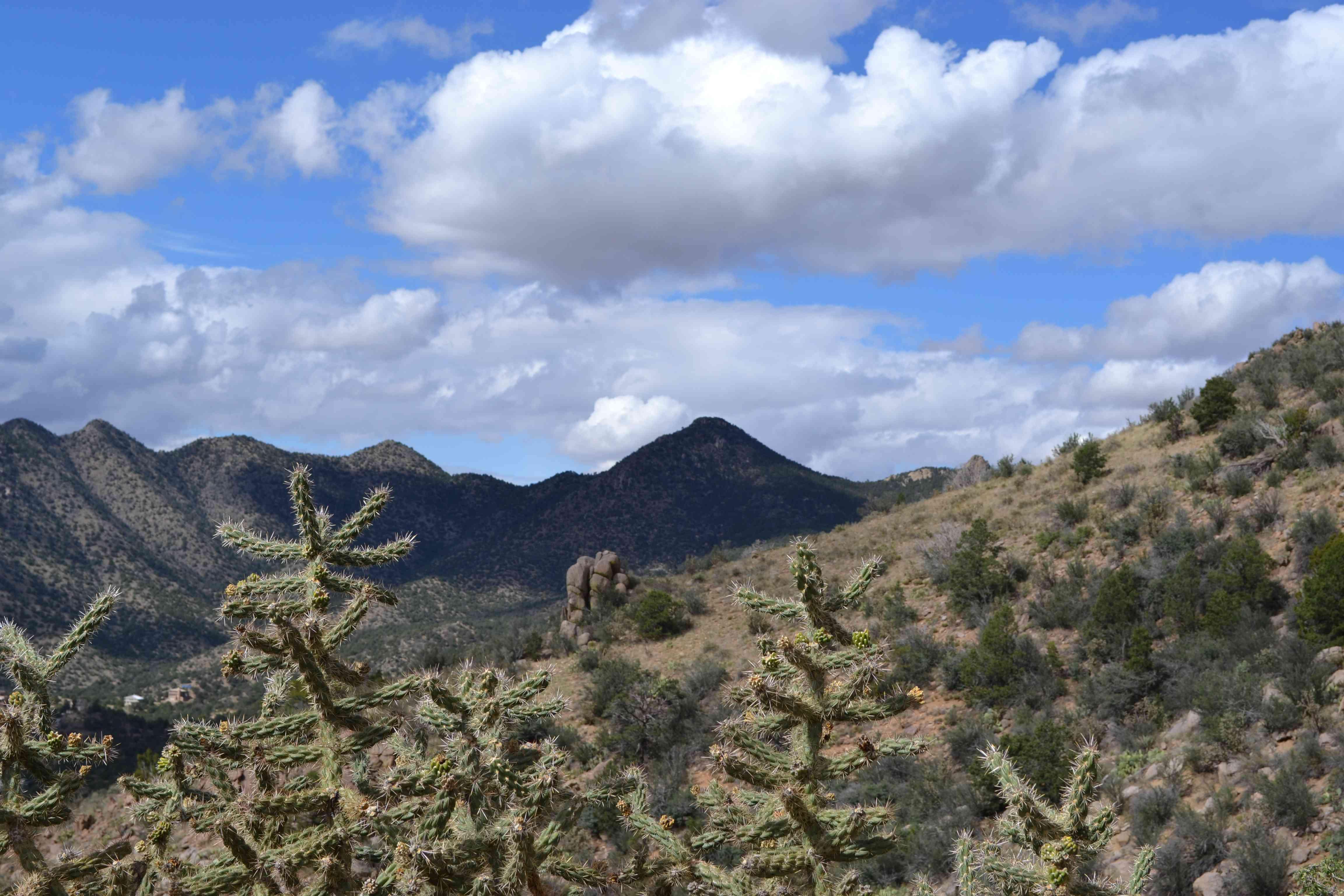 Base of the La Luz Trail in the Sandia Mountains