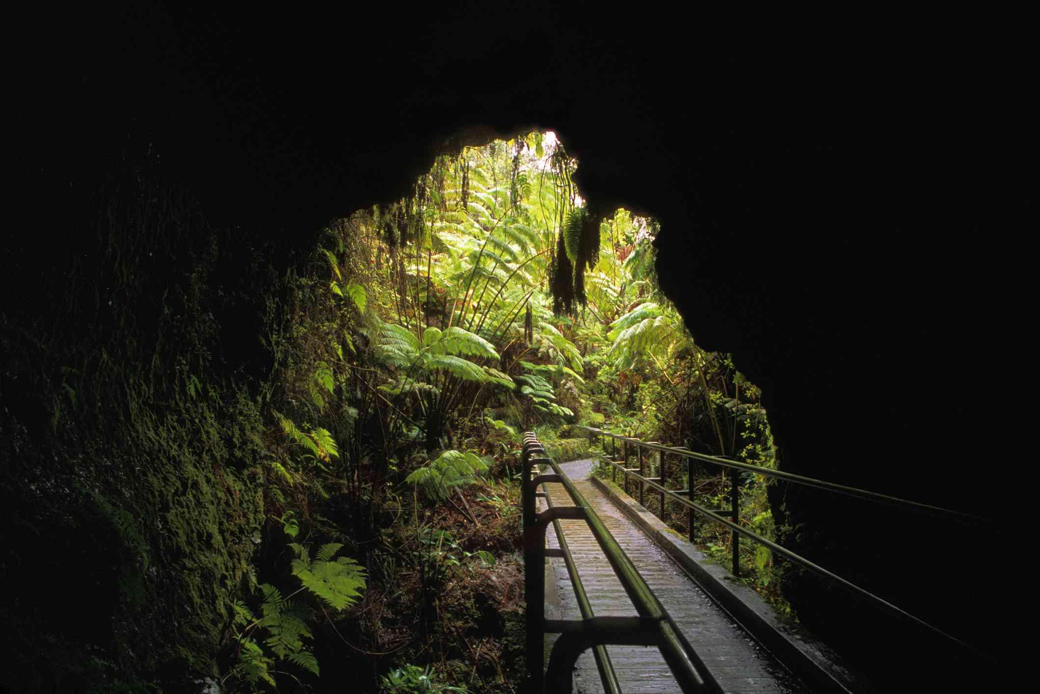The Thurston Lava Tube at Volcanoes National Park