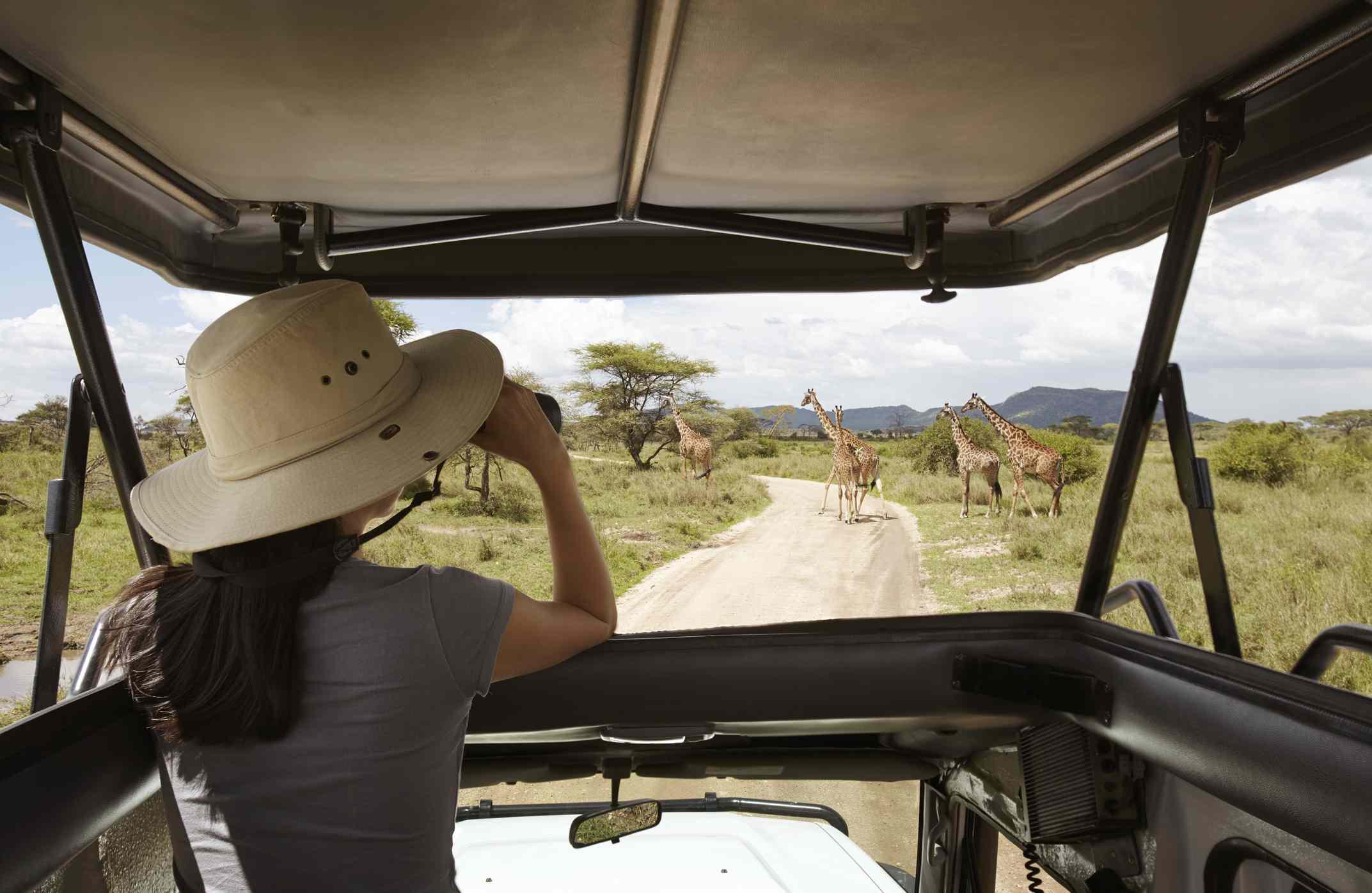 Woman on safari with binoculars, Tanzania