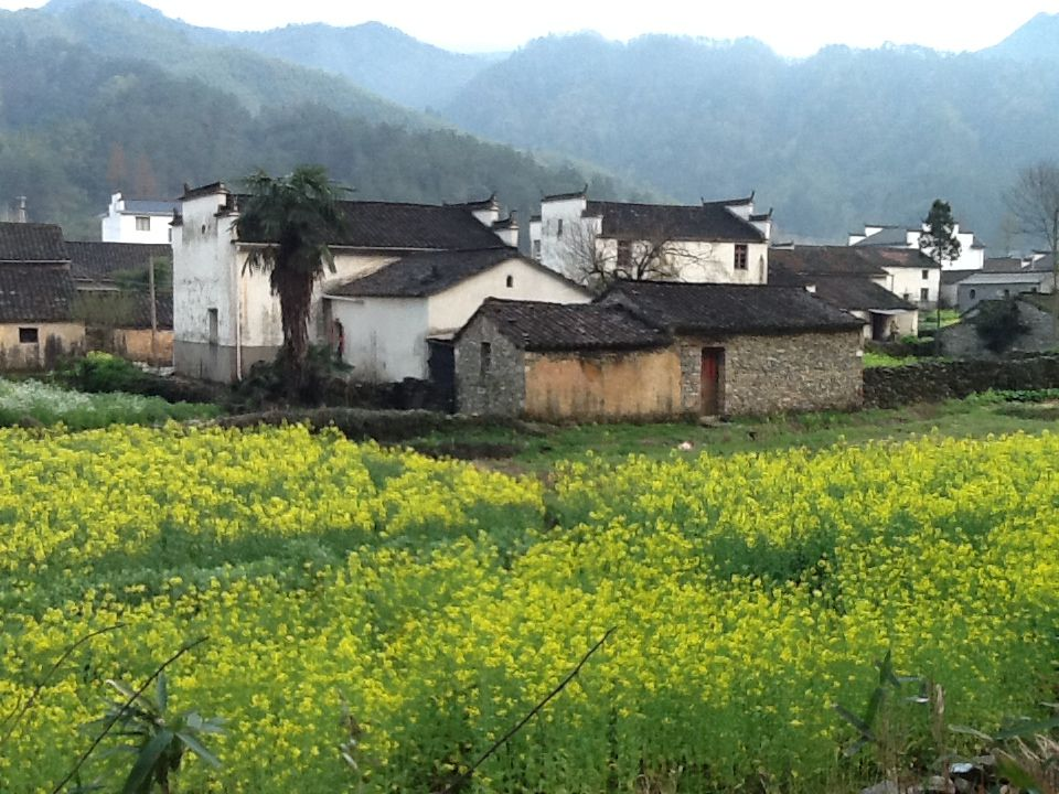 View from the road toward a typical Huizhou village at the foot of Huangshan Mountain