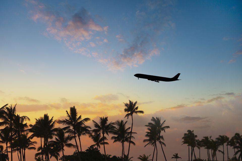 Avión sobre palmeras