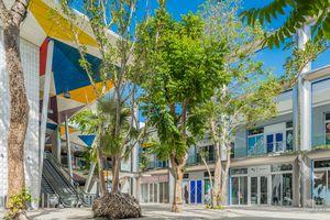 Luxury shopping in Miami Design District