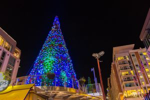 Christmas Tree at National Harbor