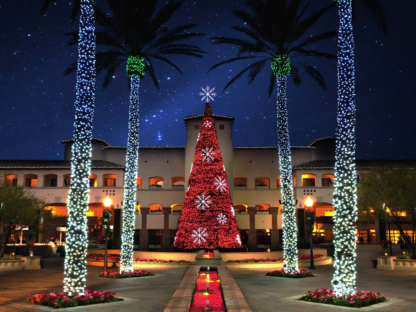 Christmas Activities In Chandler Az 2020 Things to Do for Christmas in the Greater Phoenix Area