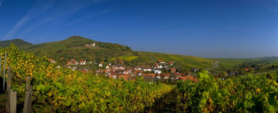 German Wine Road's Hambacher Castle