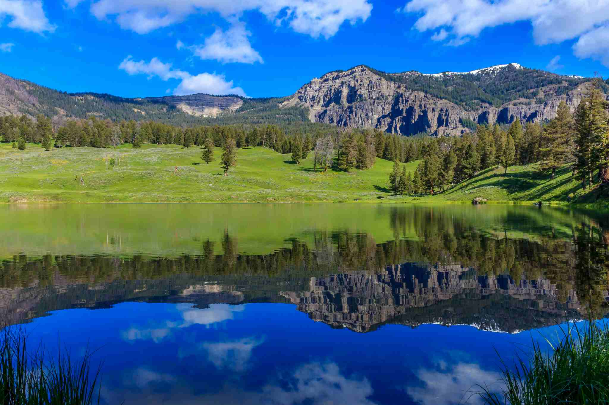 Trout Lake in Yellowstone National Park