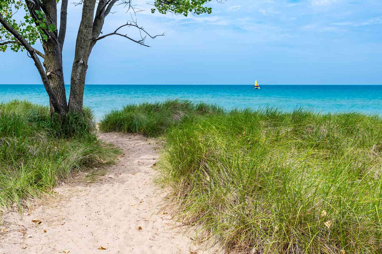 Trail leading to Evanston Beach in Chicago