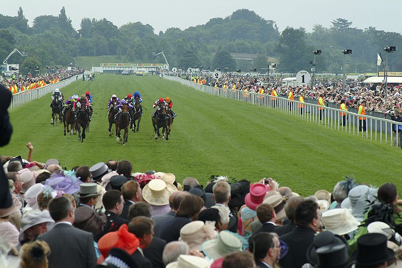 A Day at the Races in York