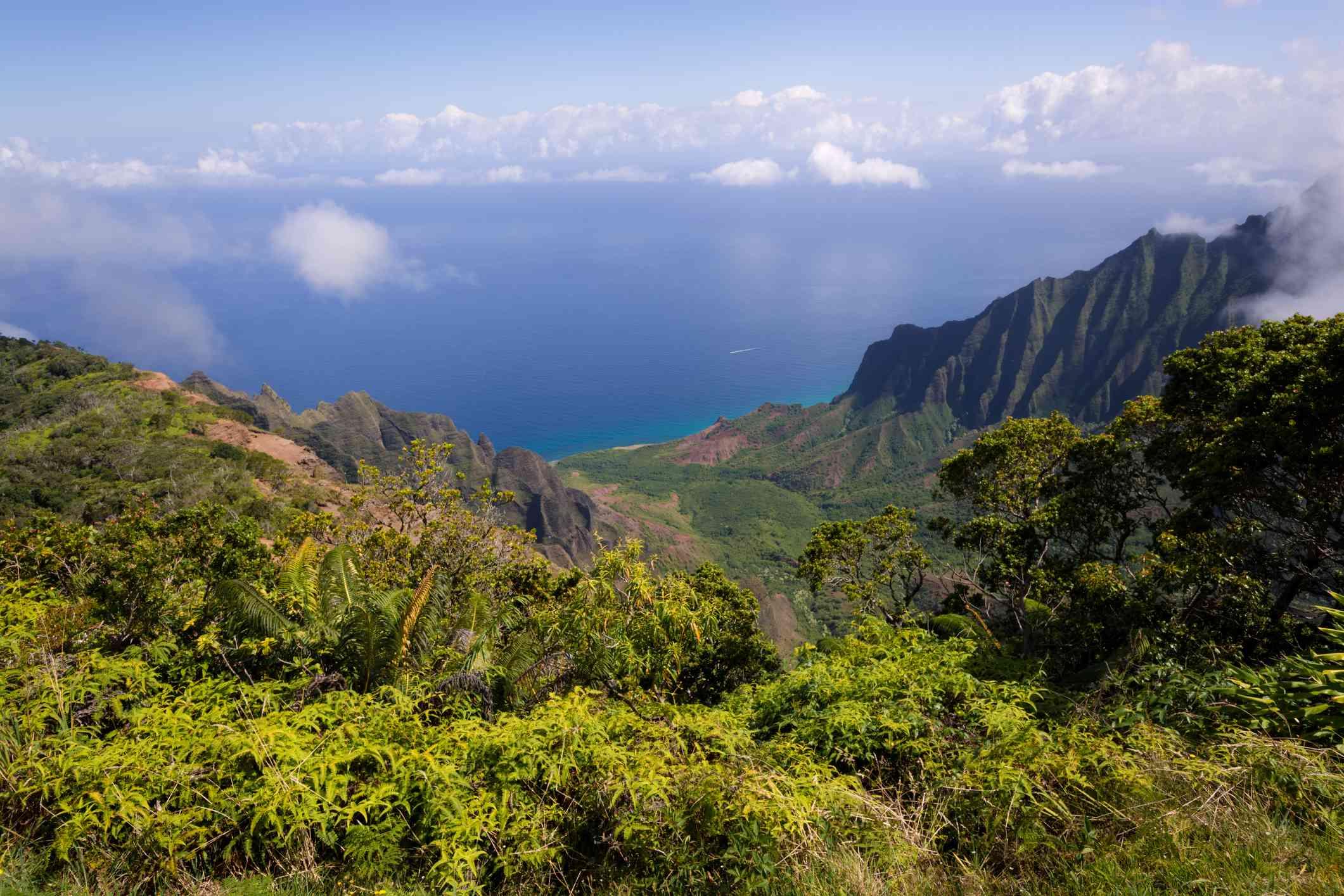 Parque Estatal Kōkeʻe, Isla Kauai