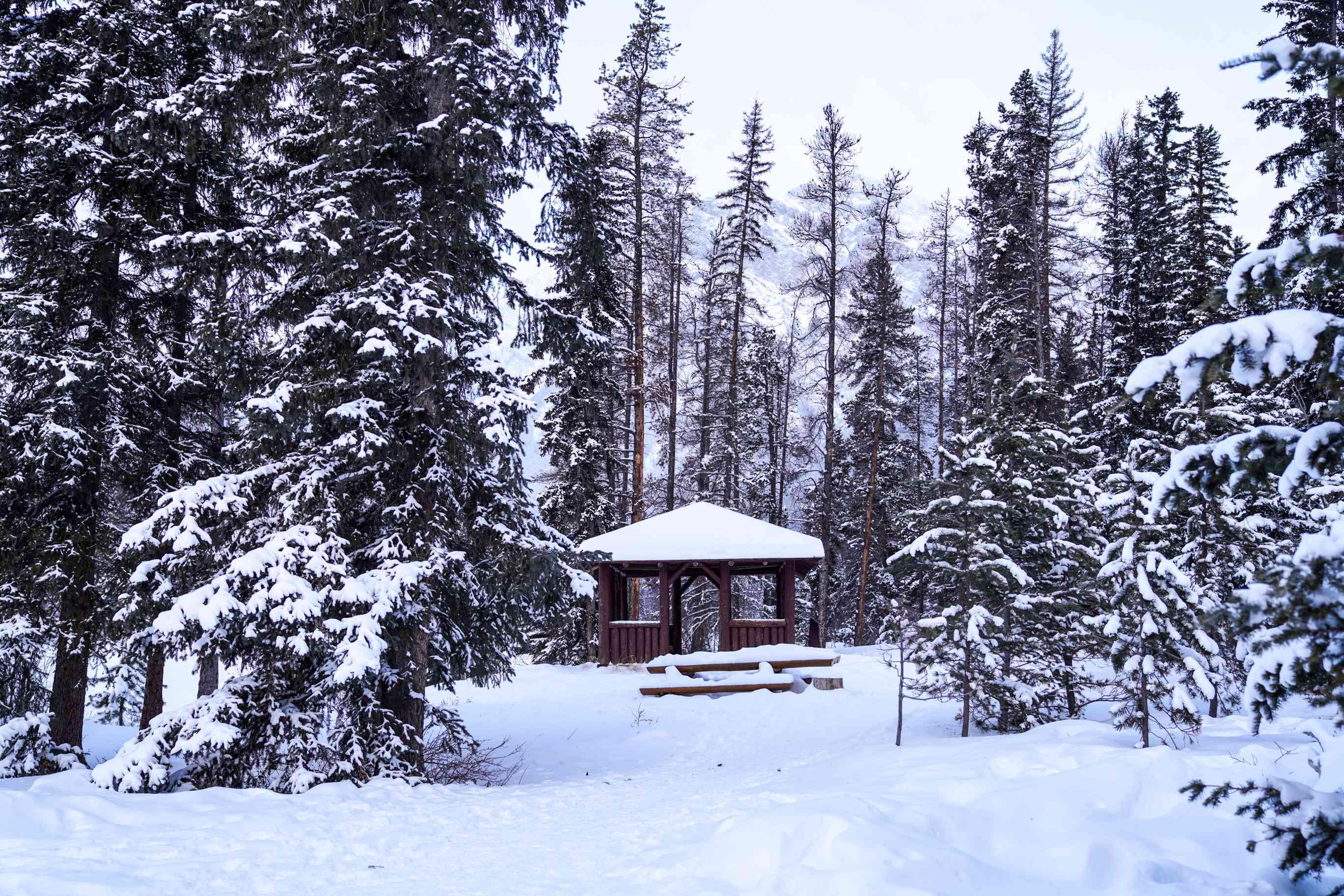 A snowy gazebo in Jasper