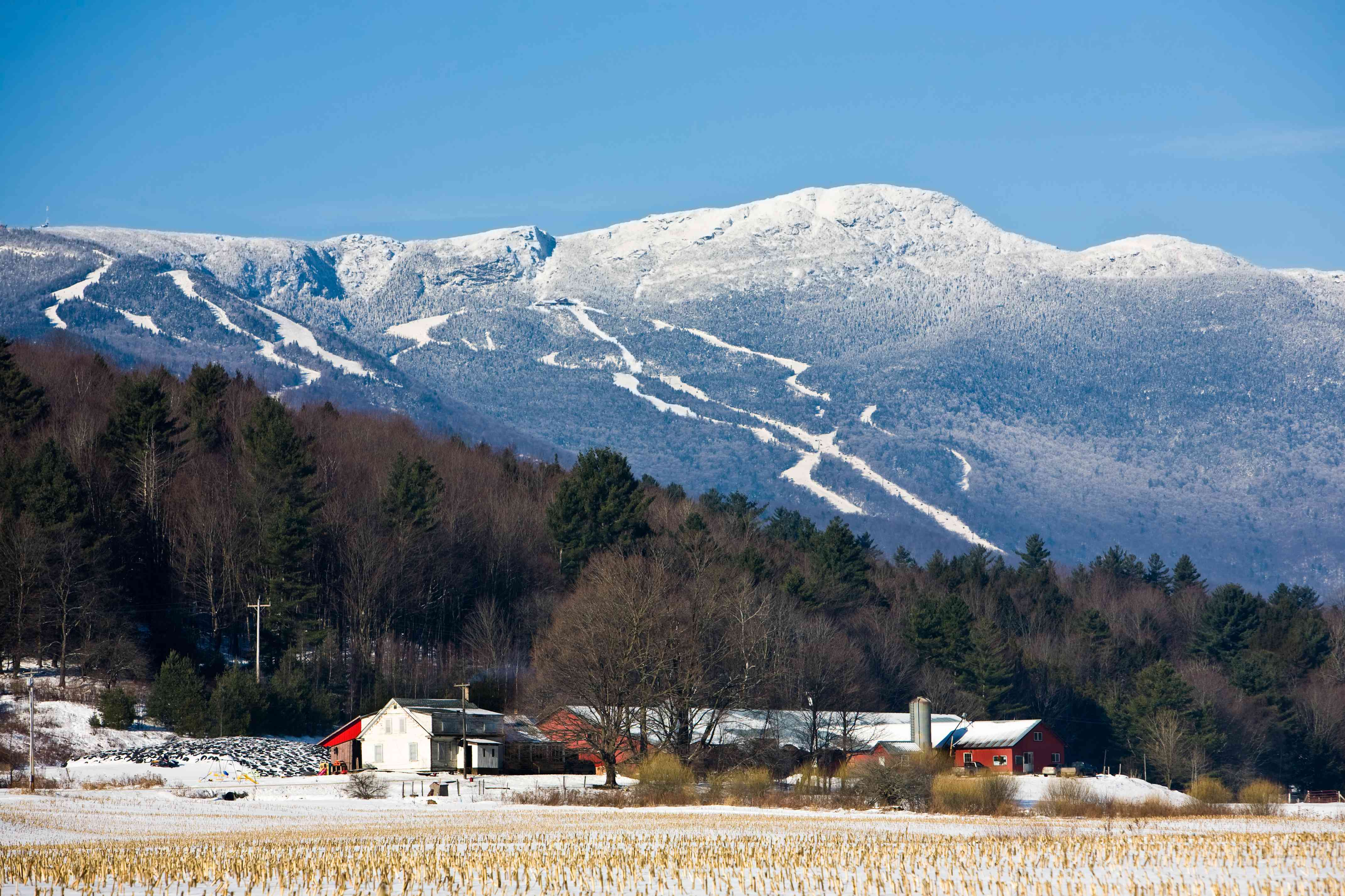 Wonderful Winter in Stowe