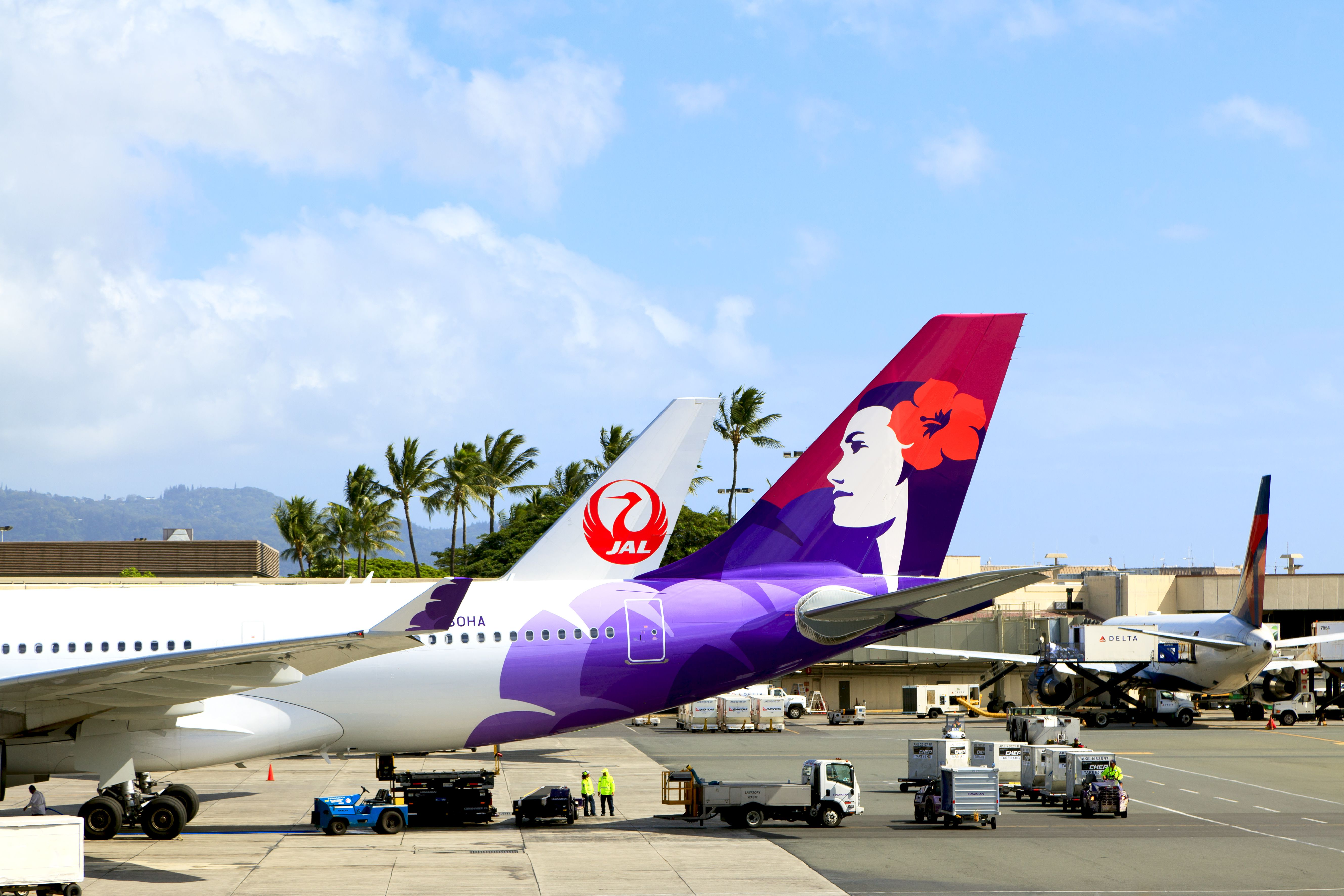 Empennages of airplane of Hawaiian Airlines and Japan Airlines