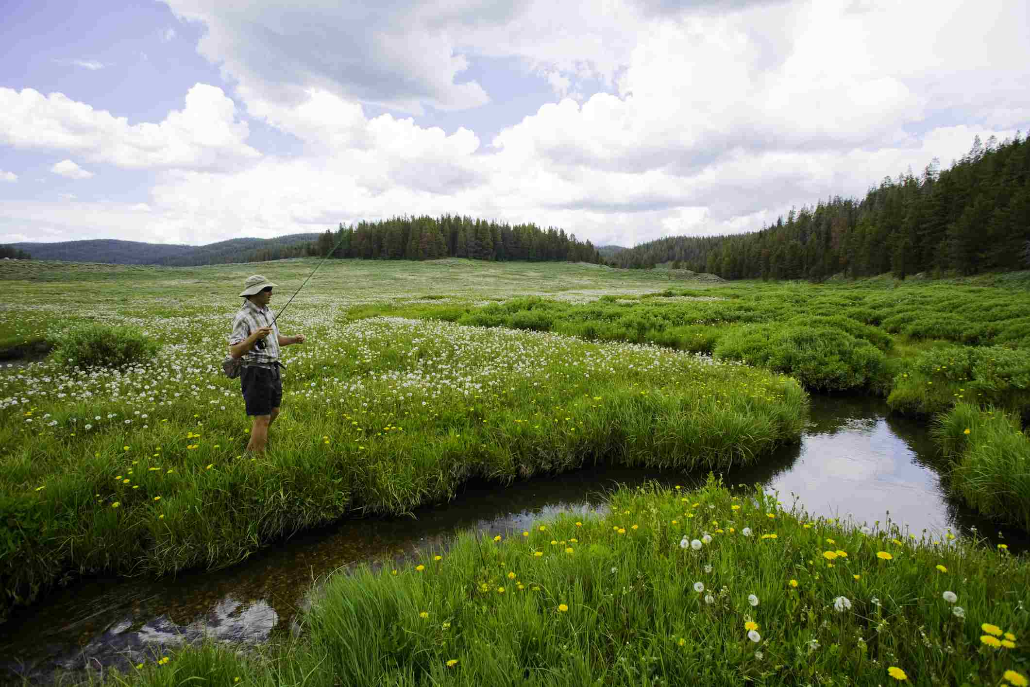 A man fishing in Steamboat Springs